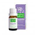 DHU-Arzneimittel GmbH & Co. KG Mama Natura Zappelin Globuli, 10 g