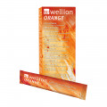 WELLION ORANGE Invertzuckersirup Beutel