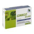 Avitale GmbH Avitale Ginkgo Biloba 100 mg, 48 St